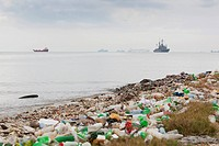 garbage on the beach after the earthquake and many large ships out in the ocean, port_au_prince, haiti
