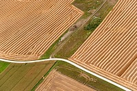 Germany, Singen, View of freshly harvested crops with winding road