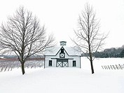 Vineyard with a farmhouse in a snowy landscape, Beamsville, Niagara Region, Ontario, Canada