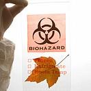 Hand wearing white rubber glove holding plastic biohazard bag containing orange Maple leaf.