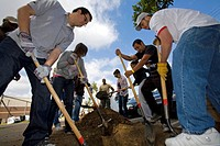 A Tree Planting in Highland Park plans to plant 100 Arbutus Trees around and along Figueroa Street. Part of the Mayor's office Million Trees LA Initia...