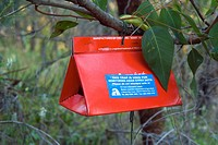 Insect Asian Gypsy moth monitoring trap _ Botanic gardens, Kings Park, Perth, Western Australia.