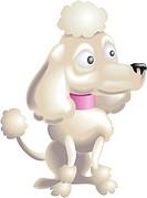 Poodle Dog Illustration