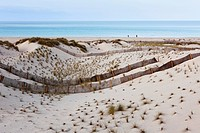 Spain, Balearic Islands, Majorca, View of dunes at cala mesquida near capdepera