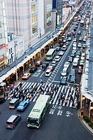 Busy Downtown Street in Japan