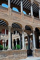 cloister of the Cathedral, Gothic, Orihuela, Alicante, Spain