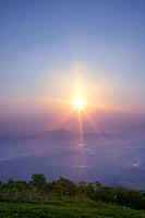 Morning sun over Daikoku woods, Takko_machi, Aomori Prefecture, Japan