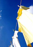 T_shirts hanging on clothesline