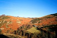 The Ceiriog Valley or Dyffryn Ceiriog runs west to east,south of the Vale of Llangollen. There are small villages in the river valley,and farms are sc...