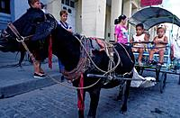 Parque Vidal. Goat harnessed to small carriage/ cart. Children passengers. Women watching.