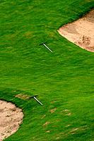 natural, growth, green, lush, grass, golf