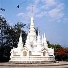 A stupa is the earliest form of Buddhist religious monument which traditionally covered the remains of the buddha. They are often painted white and ca...