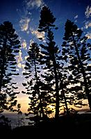 The Isle of Pines or _le des Pins is an island located in the Pacific Ocean,in the archipelago of New Caledonia,an overseas territory of France. Noume...
