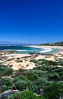 On the estuary of the Margaret River when it meets the sea,there are wide expanses of surfing beach.