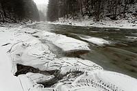 Poland. Bieszczady Mountains. Wetlinka river