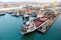 Livorno Italy Europe Port Shipping Transportation Goods