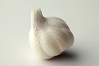 Spice , garlic bulbs lahsun allium sativum on white background