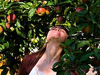 Young attractive woman enjoy apples