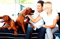 Portrait of a cute young couple caressing their dog while sitting on couch at home