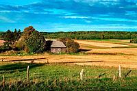 Summer landscape in rural Poland