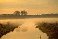 nature reserve Ochensmoor at sunrise, Germany, Lower Saxony