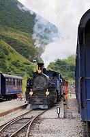Furka cogwheel railway steam engine DFB 1 arriving at Realp station  Switzerland, Western Europe, Grimsel-/Furka region, Uri  The steam engine HG 3/4 ...