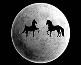 Moon and horses
