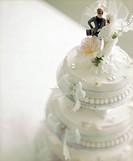 Couple Figures on Wedding Cake