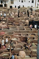 Men and teenagers tan hides in vats at a tannery in Fes.