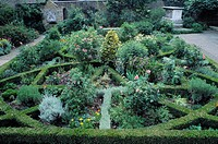 The Tradescant Garden in the Museum of Garden History in London. The knot garden is a replica 17th century garden and was opened in 1983 by Queen Eliz...