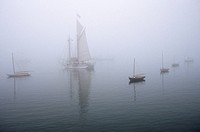 Sailboats sit in heavy fog near Brooklin, Maine. The weather, which was a result of Hurricane Fran, put an end to the town´s annual Wooden Boat Sail_I...