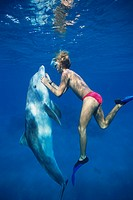 A trainer interacts with a bottlenosed dolphin at Dolphin Reef in the Red Sea. They are near Eilat, Israel.