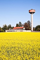 Country and water tower