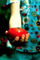 hand of girl holding tomato