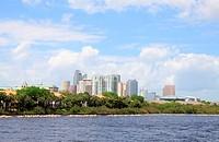 The city skyline of Tampa Florida