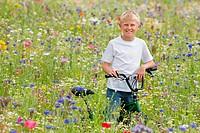 Portrait of smiling boy in wildflower field