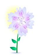 Vector illustration of a purple summer flower