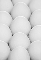 pack of eggs