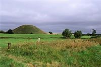 Field Near Silbury Hill