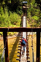 A father and son hiking across a suspension bridge that crosses Byers Creek on the Byers Lake Trail in Denali State Park, Southcentral Alaska, Summer
