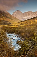Scenic view of the Little Susitna River flowing down the valley in the Hatcher Pass State Recreation Area, Talkeetna Mountains, Southcentral Alaska, A...