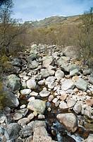 stream with big rocks