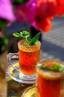 Africa, Tunisia, Tozeur  Tea from fresh mint leaves