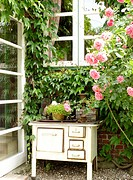 Rose bush and old oven on terrace