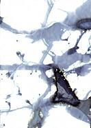 Modern art _ illustration and symbol photograph for the nervous system
