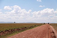 the red soil road between grassland