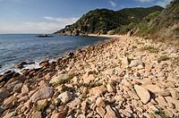 Vallpresona beach, Santa Cristina d´Aro, Costa Brava, Catalonia, Spain, Europe