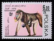 Poland _ CIRCA 1978: A stamp _ Hamadryad