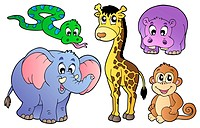 Set of cute African animals _ isolated illustration.