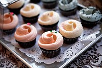 Cupcakes on a Display Tray